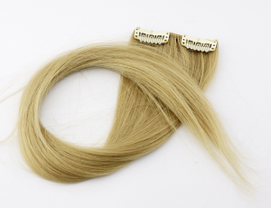 Hairclip - fake hair (2 strands)